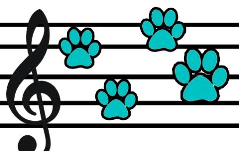 Cougar Shuffle: SoCal Vibes
