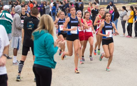 Cougar Natalie Rodriguez excels during cross country season