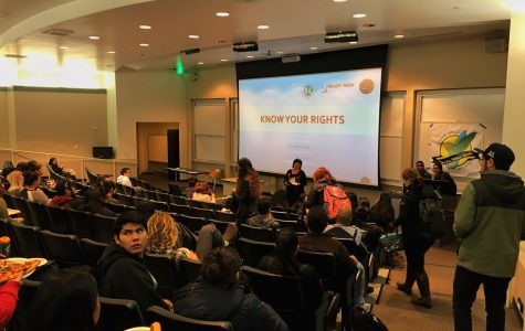 CSUSM offers guidance and support for undocumented students