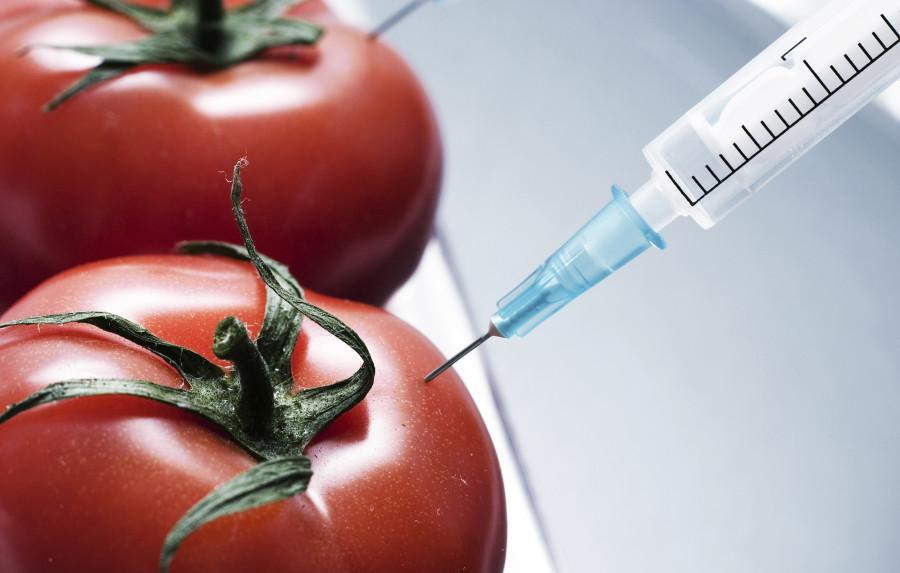 Extended edition: Let's start the GMO conversation