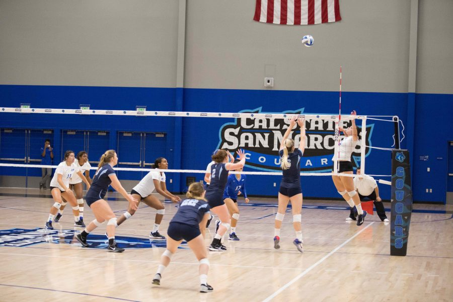 Coach+Leonard+continues+to+bring+success+to+CSUSM+volleyball