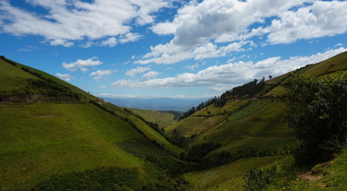 Surround yourself in lush natural beauty, while you study in Ecuador.