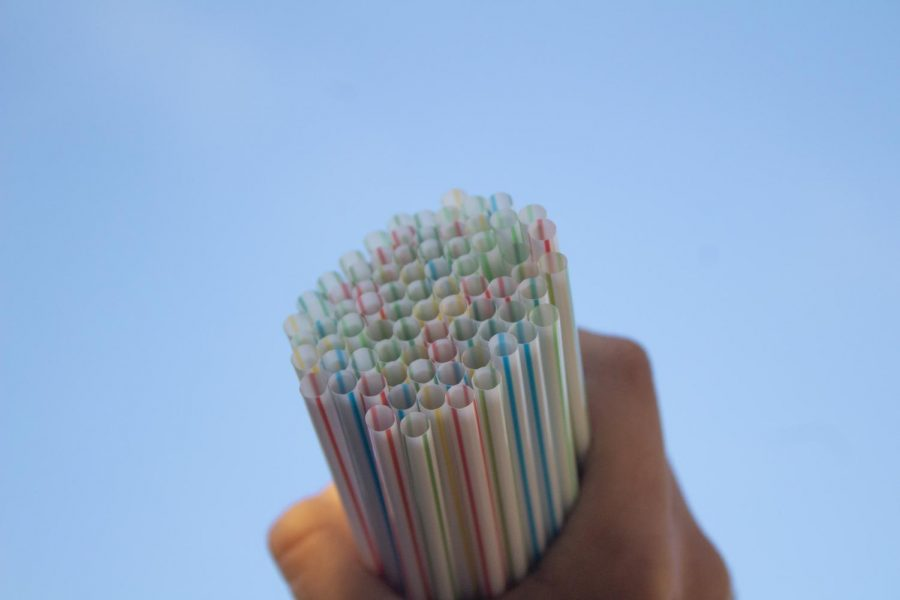 The+problem+with+the+plastic+straw+ban