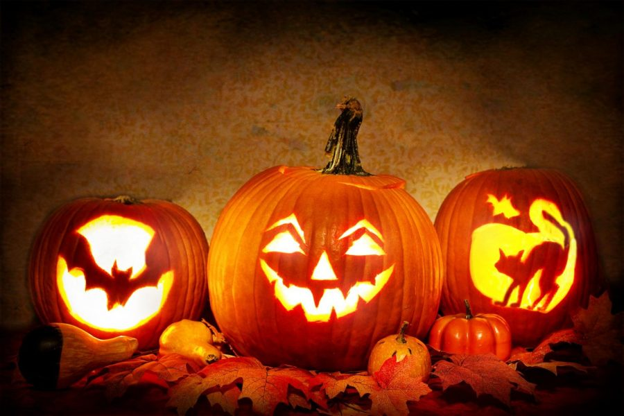 Carved+pumpkins+for+the+Halloween+spirit.
