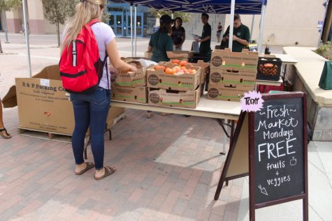 Food insecurity initiative aids CSUSM students