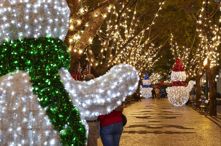 There's plenty to do in and around San Marcos during the holidays.
