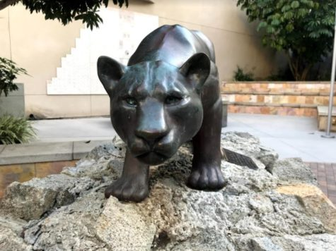 Read Edition 13 of The Cougar Chronicle (4/28/21)